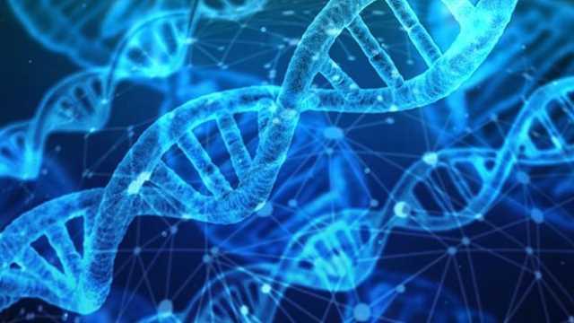 Cancer , Health , Holistic , Genetic , Carcinogen , Hereditary Disease
